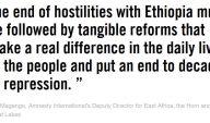 citat amnesty